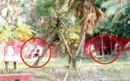 চন্দ্রমহল ইকো পার্কে বখাটেদের আনাগোনা; পরিবেশ হুমকিতে